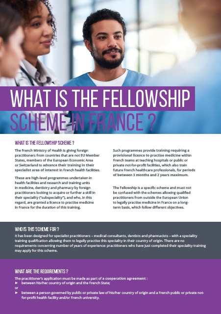 What is the fellowship scheme in France ? - JPEG
